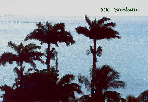 Travel Photos